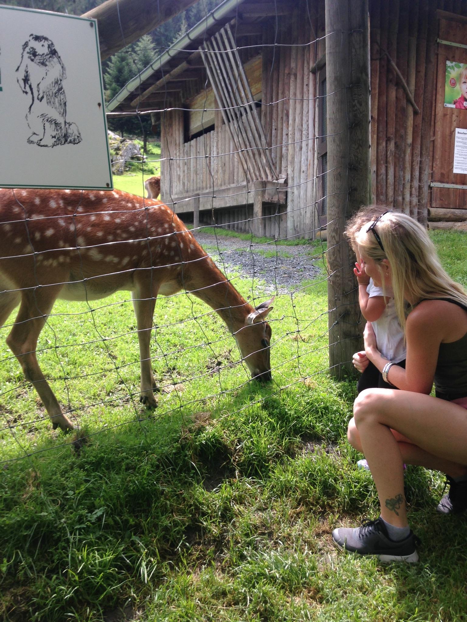 Ausflugstipp für Familien in Salzburg: Wild- und Erlebnispark Ferleiten